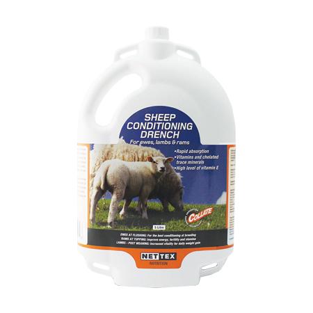 sheep-drench-5000