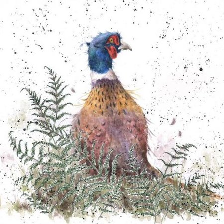 Wrendale Designs Card 'Pheasant and Fern'